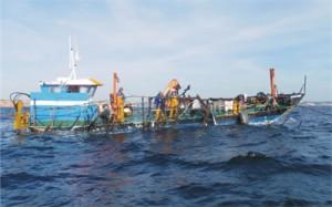 Barco a trabalhar em mar aberto, aquicultura de ostras (foto: Bruno Fragoso)